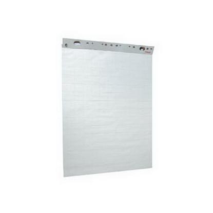 Picture of ESSELTE Papīra bloks  , 59 x 84 cm, 50 lapas, balts/rūtiņu