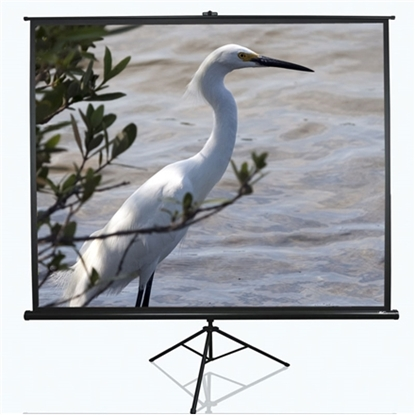 "Picture of 100"" Tripod screen"