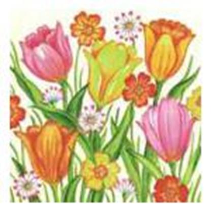 Изображение Salvetes HARMONY 33x33cm/20gab. 3 slāņi,  ar krāsainiem ziedi