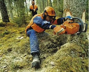 Изображение для категории Лесотехника