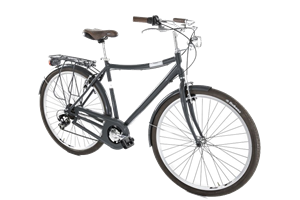 Picture for category City bikes