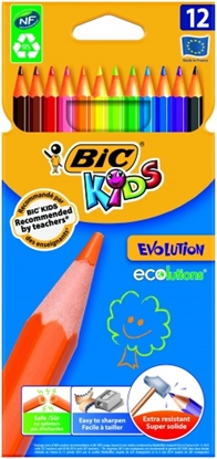 Изображение BIC Colored pencils KIDS EVOLUTION Pouch 12 pcs 8290291