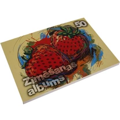 Изображение Albums zīmēšanas A4/50lp. Līgatnes pap.