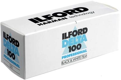 Picture of 1 Ilford 100 Delta    120