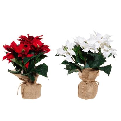 Изображение Mākslīgie ziedi Winter Session Puansetija podiņā 36cm