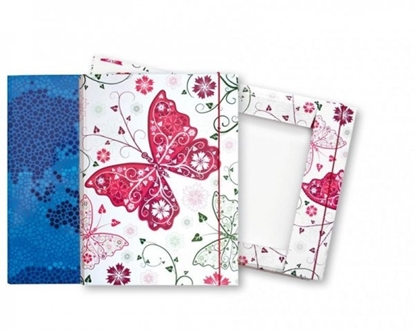 Picture of Folder for notebook SMLT, and rubber, A4, cardboard, color 0821-100