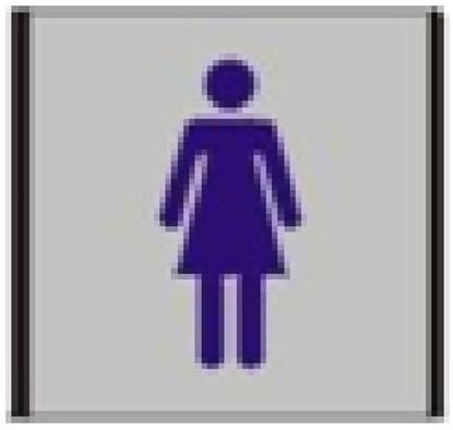 Изображение Informacinė lentelė 1.19 Moterų tualetas, 93mm x 93mm 0616-118