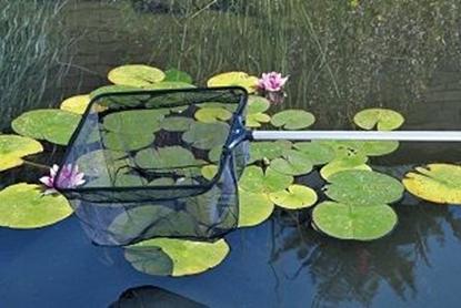 Picture of Aļģu ķesele Profi Pond