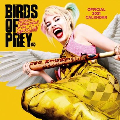 Изображение 2021 Calendar - Birds of Prey, 30x30cm