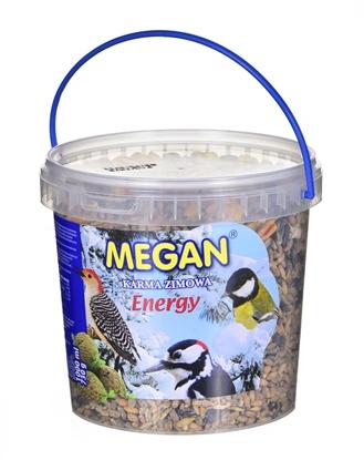 Изображение MEGAN Energy - karma tłuszczowa dla ptaków zimujący