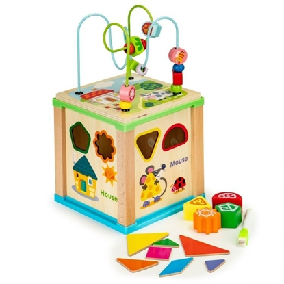 Attēls no EcoToys 5in1 Sorter and Mazes