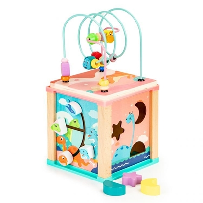 Picture of EcoToys 5in1 Sorter and Mazes