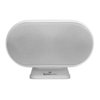 Изображение SPEAKER CENTER WHITE/SAT3CC-WT TRUAUDIO