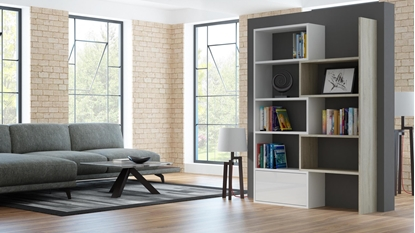 Изображение Cama bookcase PACO white/sonoma oak