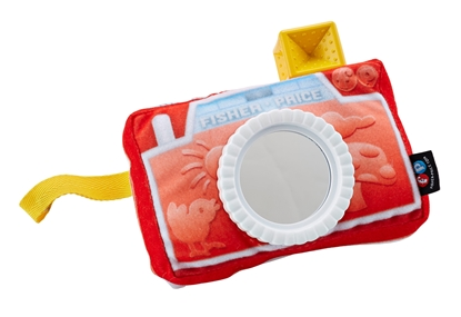 Picture of CRINKLE CAMERA MIRROR