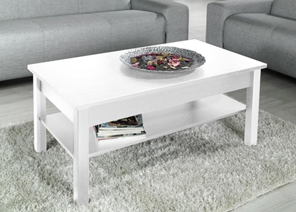 Attēls no Cama coffee table UNI 110/60/47 white mat