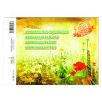 Picture of Akvareļu albums A4,  10 lapas,  210 g/m2,  SMLT