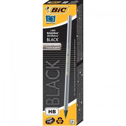 Изображение Bic Pencils EVOLUTION BLACK ECO BOX12