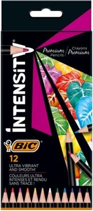 Изображение BIC Coloring pencils Intensity box of 12 pcs. 951844