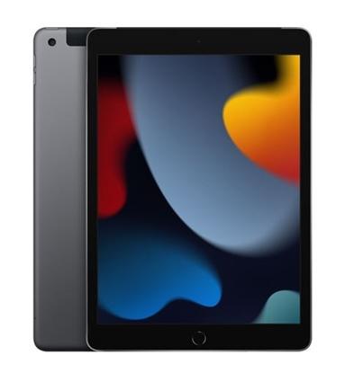 Attēls no Apple 10.2inch iPad Wi-Fi 256GB Space Grey      MK2N3FD/A